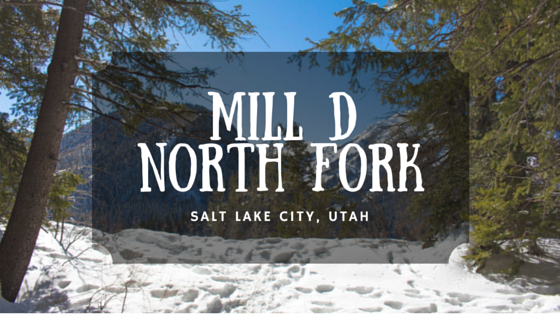 Mill D North Fork
