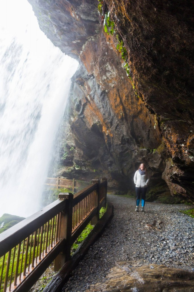 Dry Falls Behind Falls