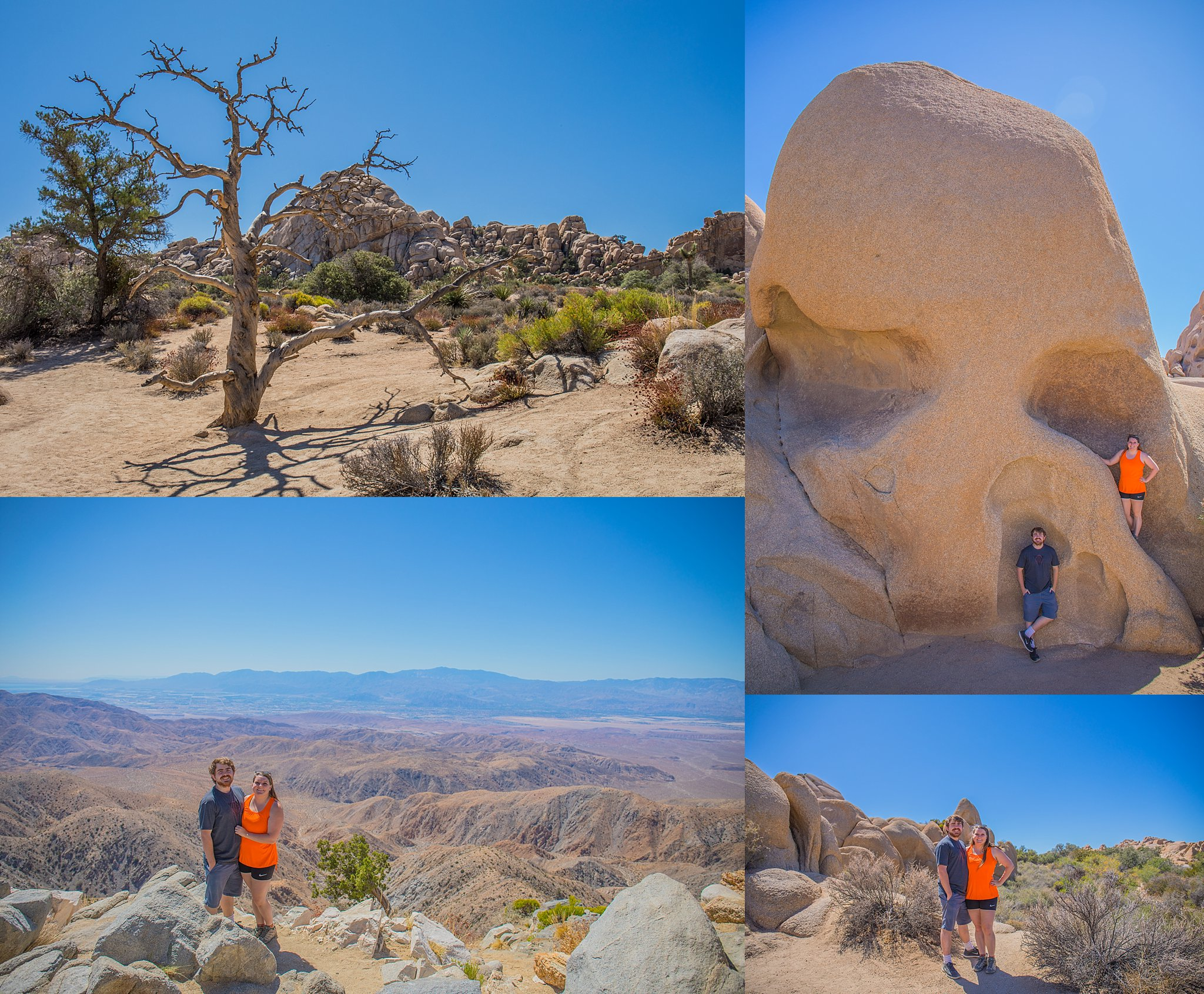 Weekend Trip to Joshua Tree National Park and Palm Springs