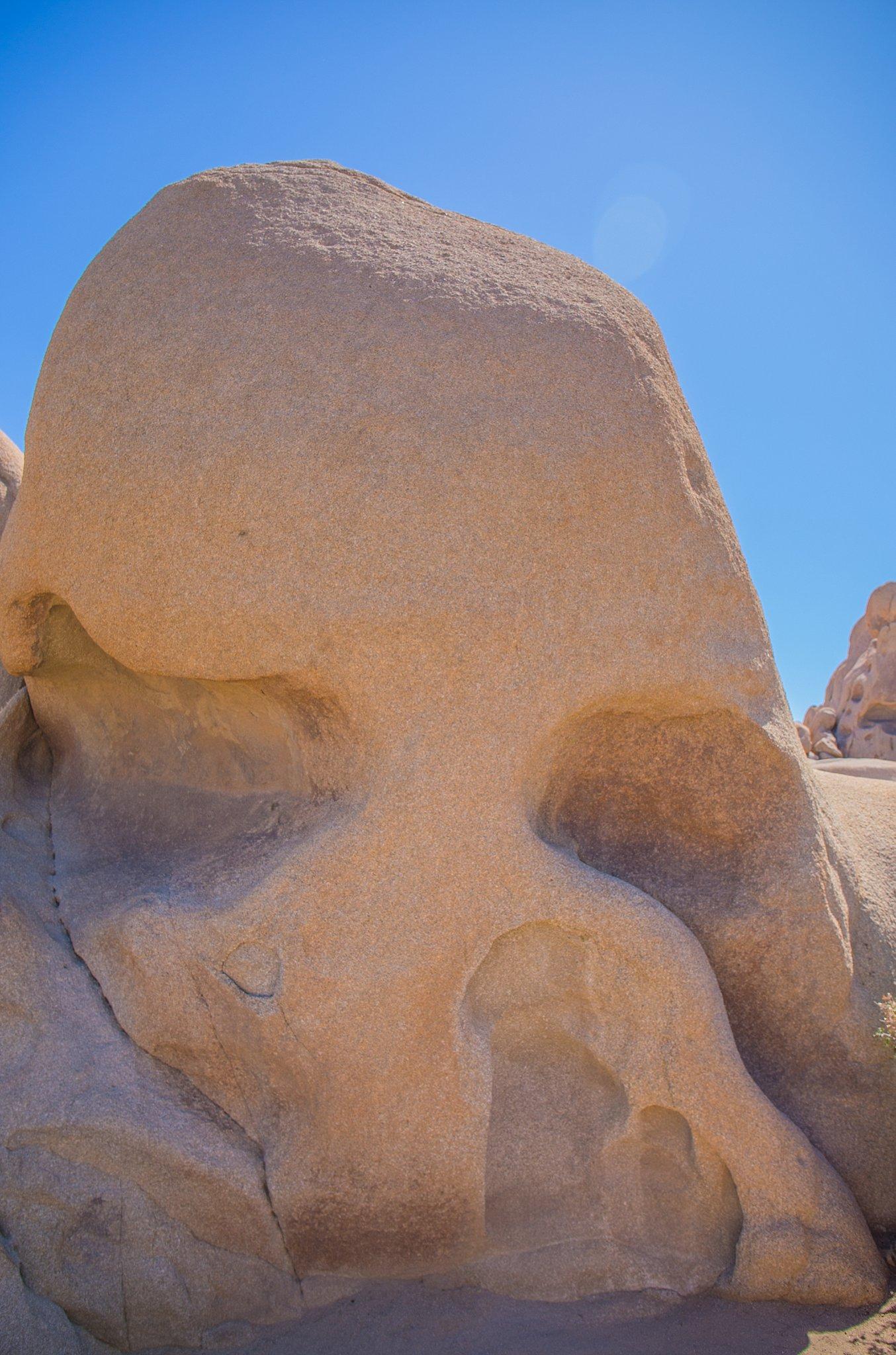 adventure,california,hilary gardiner photography,joshua tree national park,national park,next stop adventure,