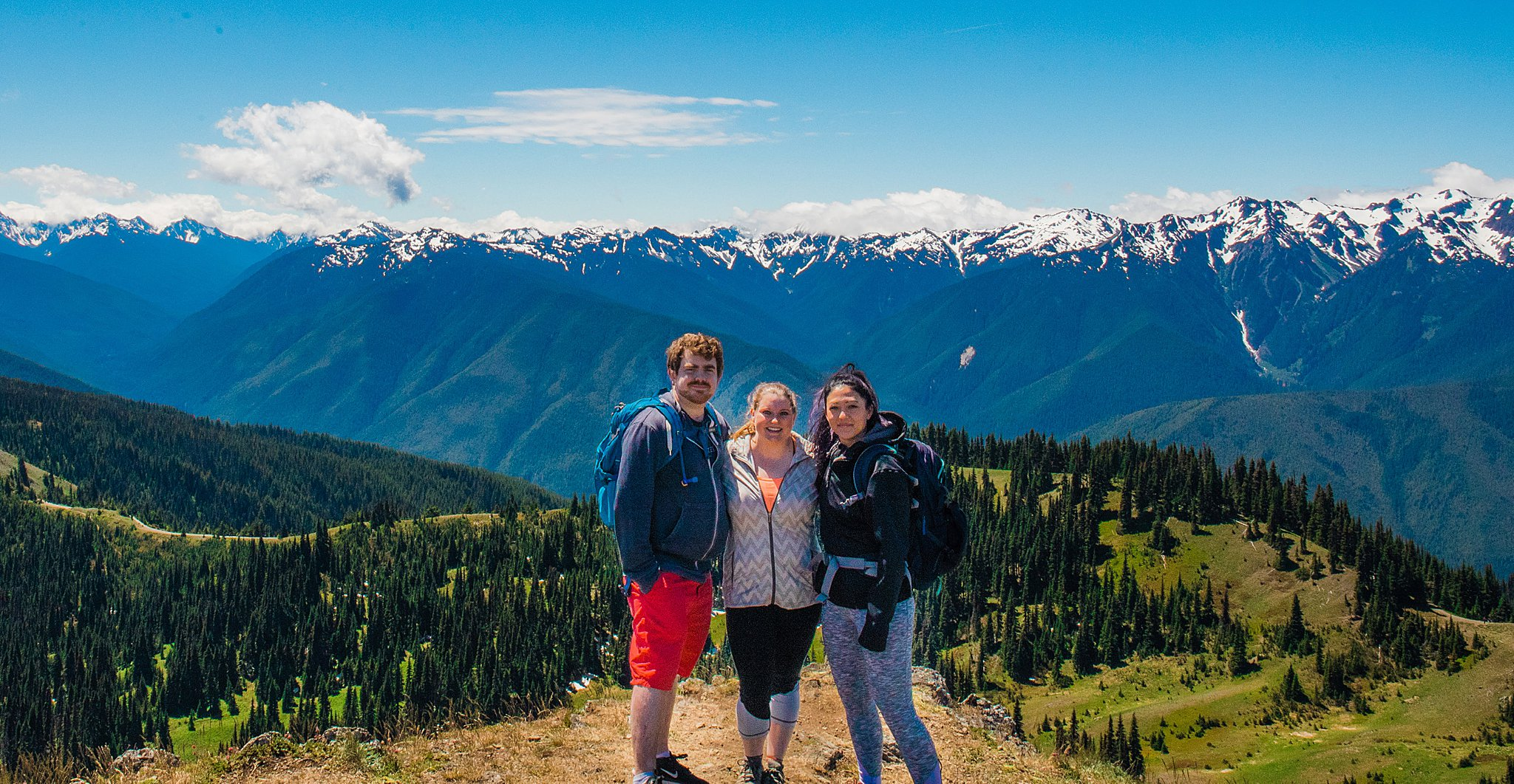 olympic national park, hurricane ridge, hurricane hill hike, hiking, 52 hike challenge, trail, washington