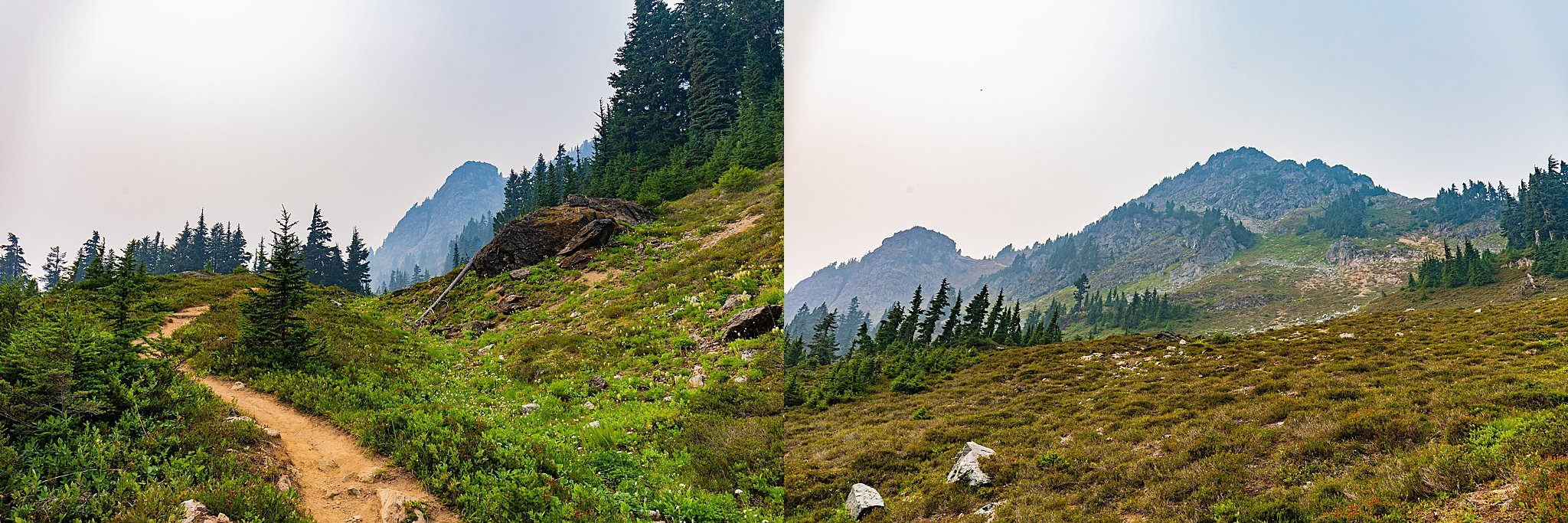 mount baker wilderness, mount baker, winchester mountain, winchester lookout, hike, 52 hike challenge, wildfire, dog friendly hike, washington, twin lakes trailhead