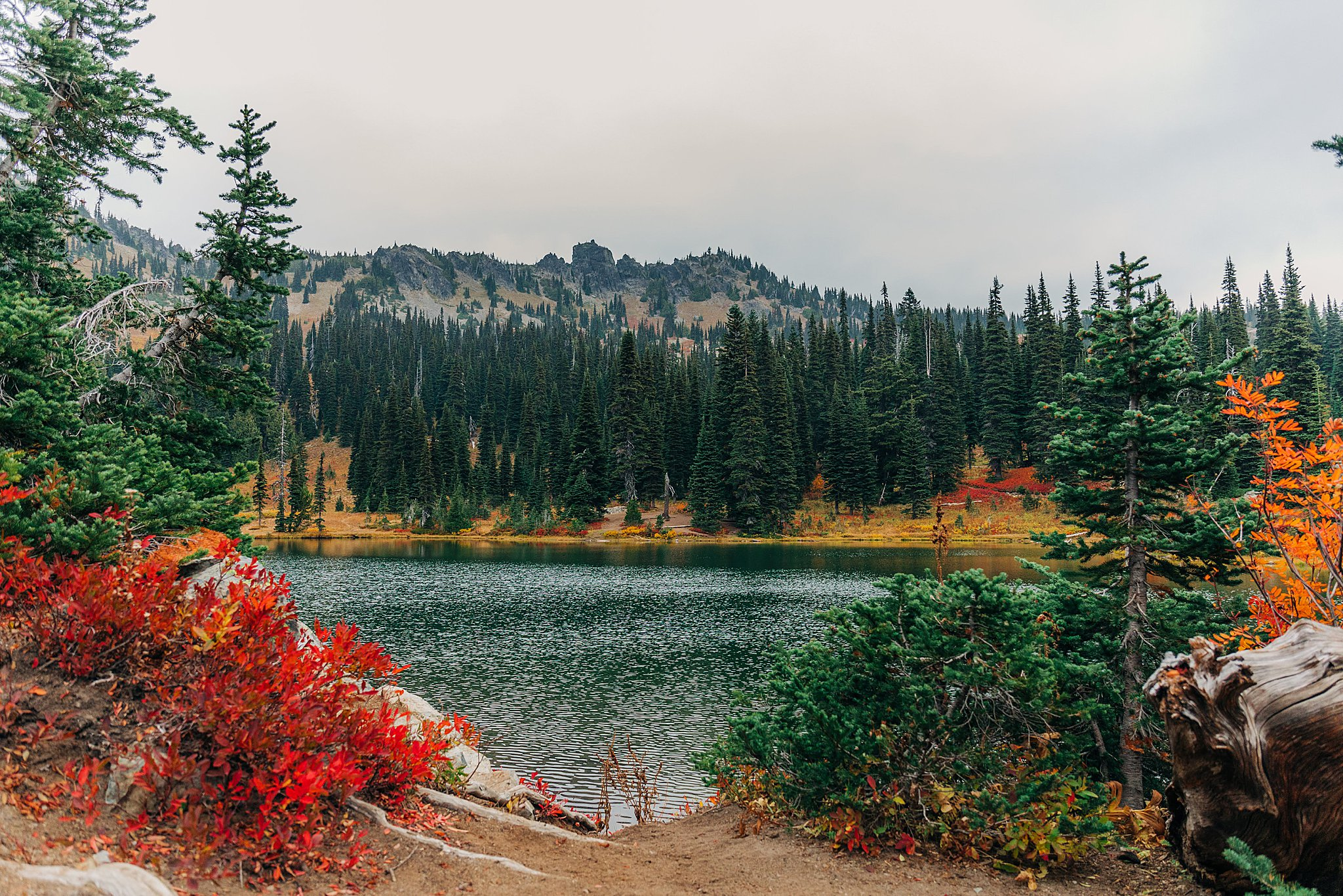 sheep lake, sourdough gap, washington, pacific crest trail, pct, fall colors, fall in washington, autumn, dog friendly hike, dog friendly hikes near mount rainier, mount rainier national park
