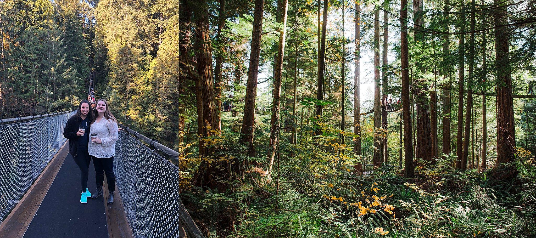 capilano suspension bridge, vancouver, things to do in vancouver, suspension bridge, cliffwalk, treetops adventure, visit british columbia, canada